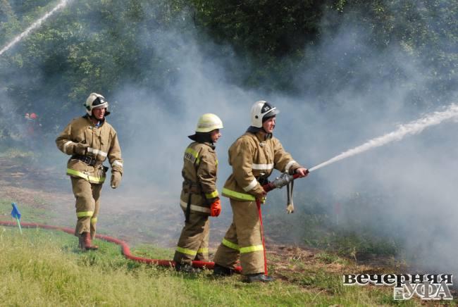 Лесным пожарам поставим заслон