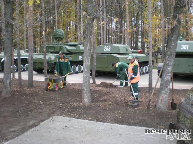 Парк укрыли зелёным ковром  и для весны подарили тюльпаны